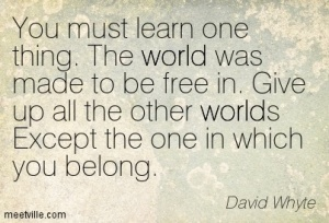 Quotation-David-Whyte-world-Meetville-Quotes-174433