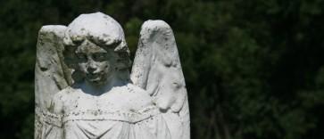 angels-650x280