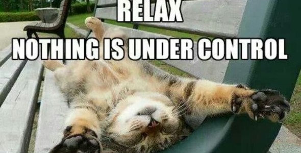 relax_nothing_is_under_control_cat_blog-590x300.jpg