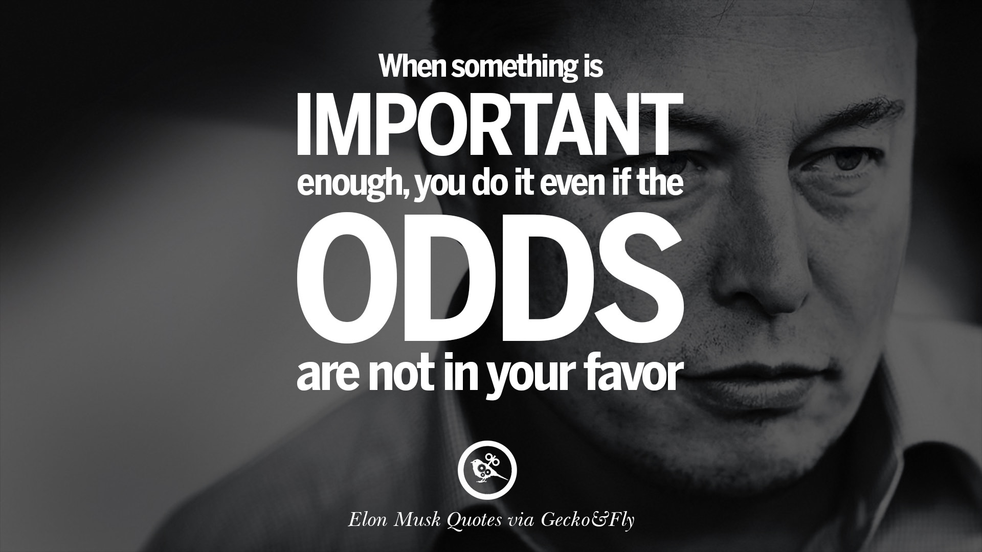 Elon Musk Quotes: The Whole Picture Of A Role Model